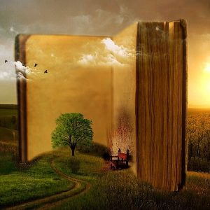 Basilicata da leggere
